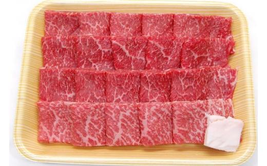 飛騨市産 5等級飛騨牛 焼肉用 500g 冬ギフト お歳暮