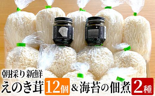 02-AA-4402・朝採り新鮮えのき茸12個と海苔の佃煮2種セット