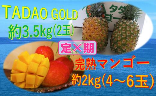 【農家直送定期便!】TADAO  GOLD(2玉)3.5kg & 完熟マンゴー約2kg(4~6玉)