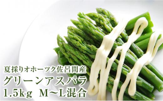 [№5890-0874]夏採りグリーンアスパラ1.5kg(M~L)北海道佐呂間産【2021年7月出荷開始】