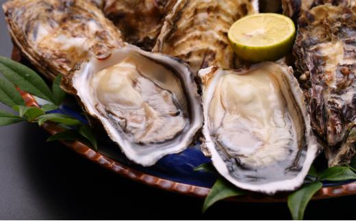 [№5890-0872]オホーツク佐呂間産 殻付き2年牡蠣3kg(25~30個前後)