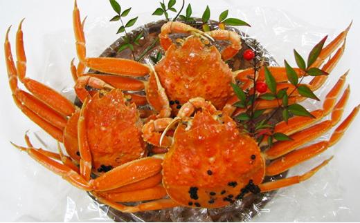 子持ち 茹でセコガニ 大サイズ 3杯セット 京都 天橋立 カニ 蟹[№5716-0157]