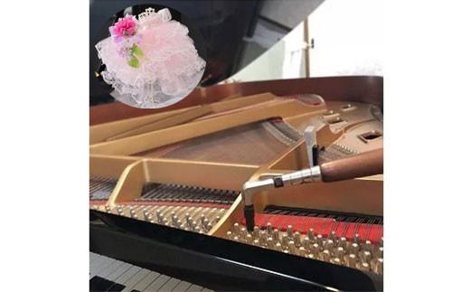 【華麗なハーモニー】プリンセスドールとピアノ調律チケット
