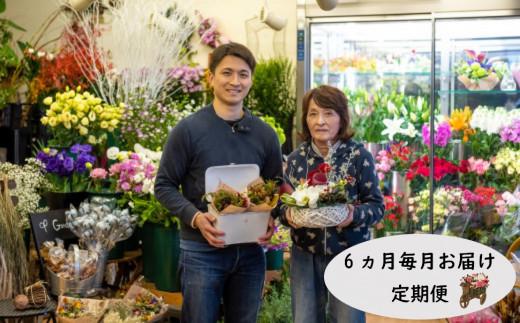 【定期便/6ヶ月】季節のフラワーアレンジメントプレミアム