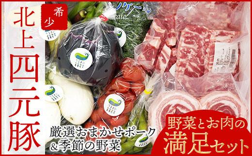 【GIFTON】北上産 四元豚 厳選おまかせポーク 豚肉と季節の野菜セット