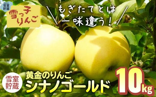 【先行予約/期間限定/2021年3月・4月発送】雪っ子りんご シナノゴールド  10kg