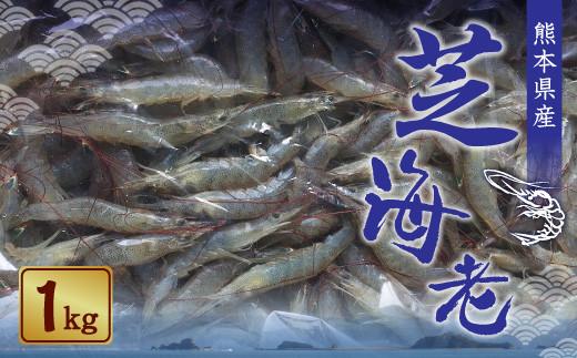 【数量限定】熊本県産 芝エビ 1kg 冷凍 海老 えび