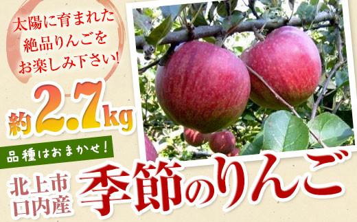 【北上市/口内産】季節のりんご 約2.7kg