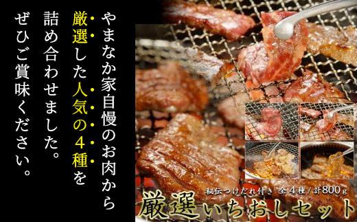 【やまなか家】 厳選いちおしセット(元気カルビ200g他)