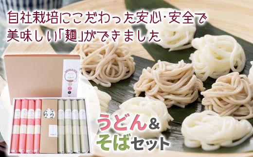 【岩手県自社農場栽培】米粉入り 味な麺セットSB(めんつゆ付き)