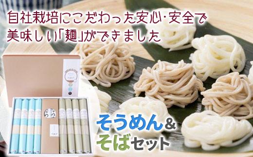 【岩手県自社農場栽培】 米粉入り 味な麺セットSA(めんつゆ付き)