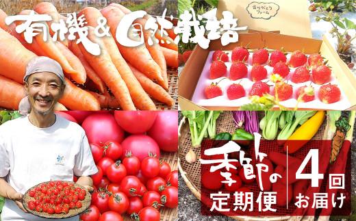 ありがとうファーム 有機栽培農産物と加工品 魅力の定期便 年4回 野菜 果物 イチゴ 人参  野菜セット