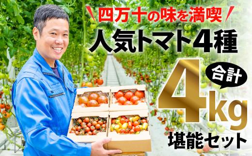 Fbg-09【四万十の味を満喫】人気トマト4種4kg堪能セット
