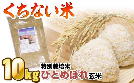 【数量限定】北上産 くちない米(特別栽培米ひとめぼれ玄米)10kg★