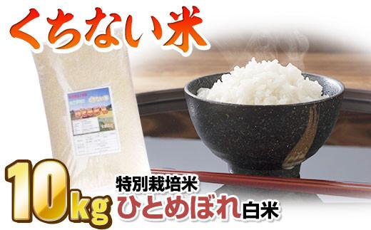 【数量限定】 北上産 くちない米(特別栽培米ひとめぼれ白米)10kg★