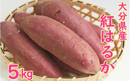 大分県産紅はるか(生芋)5kg