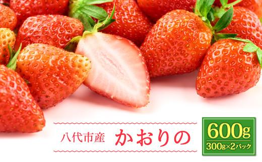 八代市産 いちご かおりの 300g×2パック  計600g 果物 苺