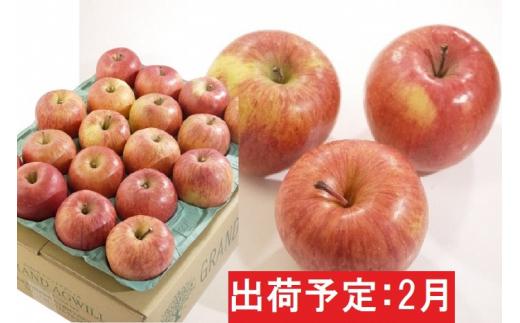 [№5228-0504]2月 美味!特A 葉とらずサンふじ約5kg【弘前市産・青森りんご】