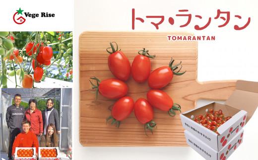 DN1 玉名市産ミニトマト「トマ・ランタン」 3kg(1.5kg×2箱)