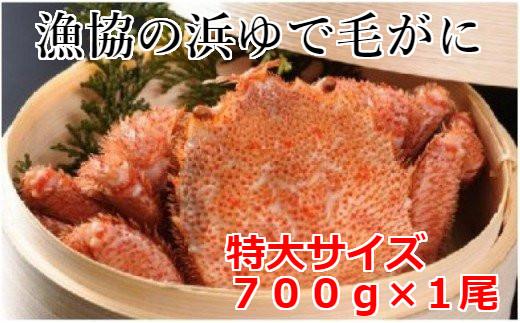 北海道日高産 漁協直送 浜ゆで毛がに(特大700g)1尾【冷凍】[02-930]