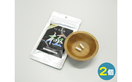 "No.842 【2個】NS乳酸菌""極""(横手市特別パッケージ) / 健康 カプセル 秋田県"