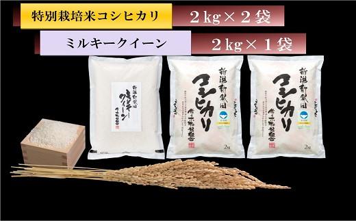 D07【令和2年産】 こだわりのお米 食べ比べセット(新潟県新発田市産)