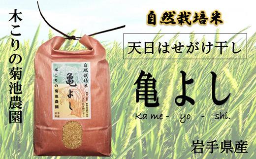 木こりの菊池農園 自然栽培米【亀の尾】(白米・玄米) 5kg ×6か月定期便