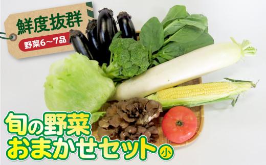 鮮度抜群!【平留商店】こだわりの旬の野菜おまかせセット(小)(野菜6~7品)