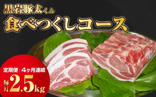 【定期便】予約受付中!黒岩豚太くんシリーズ 食べつくしコース 4ヶ月連続★(毎月約2.5キロ)