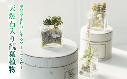 【空気をきれいにするアートフラワー】天然石入り観葉植物