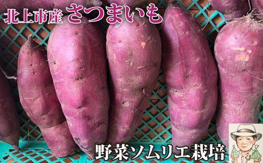 【2021/10月中旬~発送予定】 野菜ソムリエ齋藤セレクト「新」秋セット
