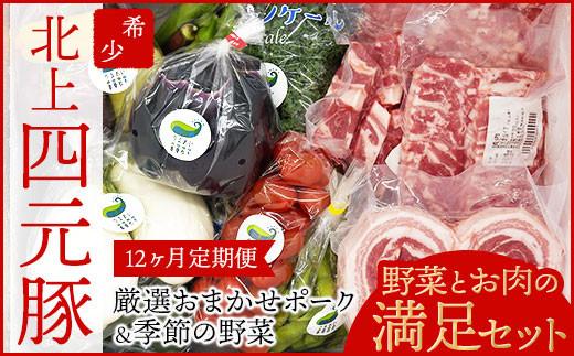 【GIFTON】岩手・北上産四元豚 厳選カット肉 & 季節のうるおい野菜 セット 【12ヶ月定期便】