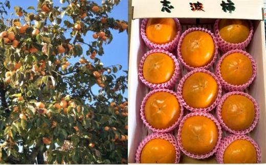 [№5656-1772]早生 富有柿 Lサイズ 14~15玉入