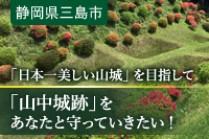 https://www.furusato-tax.jp/gcf/341