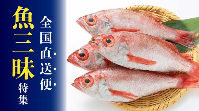 全国直送便 魚三昧特集