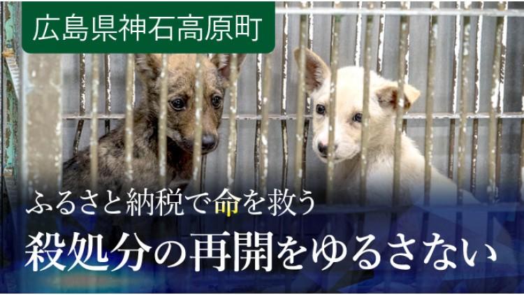 https://www.furusato-tax.jp/gcf/259