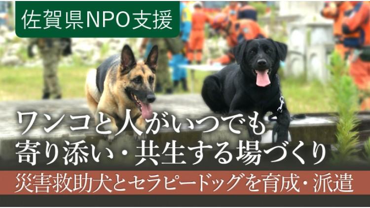 https://www.furusato-tax.jp/gcf/532