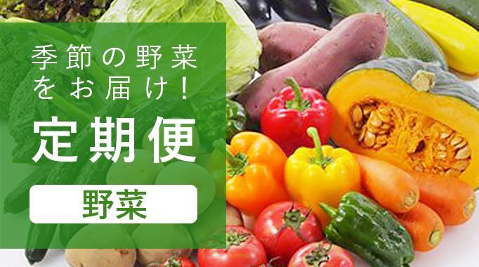 定期便 野菜