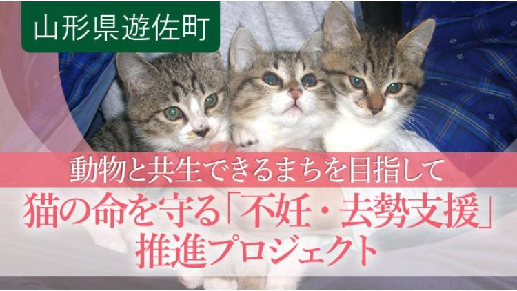 https://www.furusato-tax.jp/gcf/596