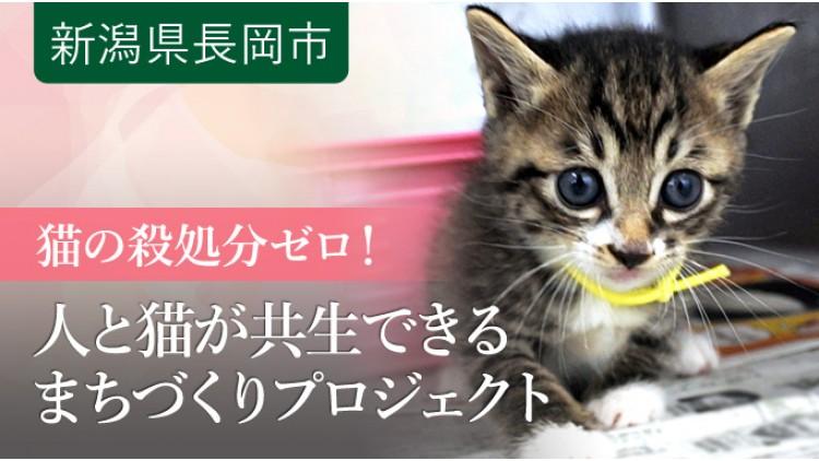 https://www.furusato-tax.jp/gcf/689