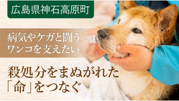 https://www.furusato-tax.jp/gcf/769