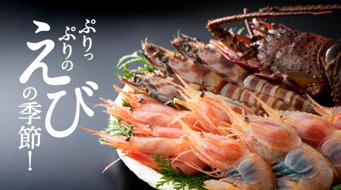 海老,エビ,海鮮,魚貝,魚介に関連する特集