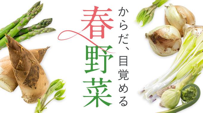 春野菜,アスパラ,新玉ねぎ,山菜に関連する特集