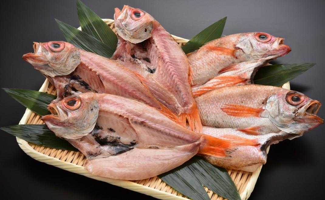 魚好きも満足!日本海の海の幸に舌鼓を!