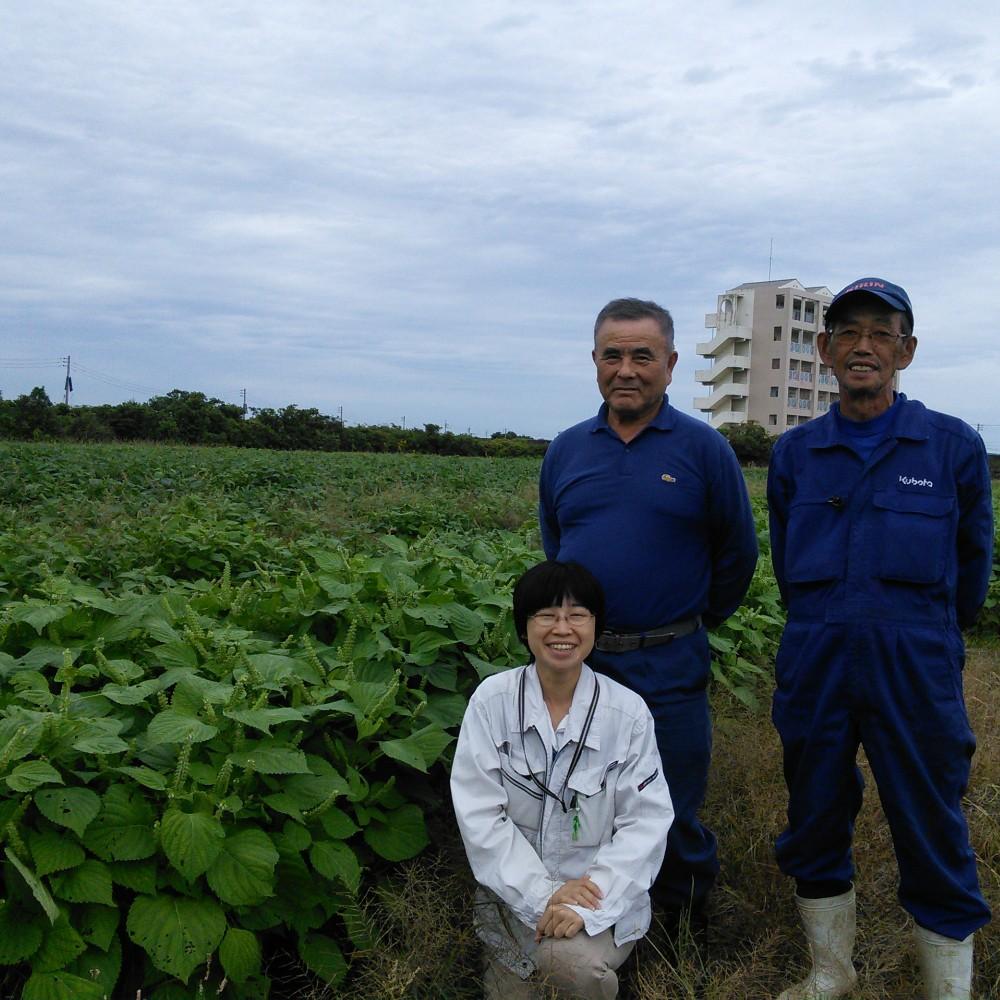 農事組合法人 湊営農組合