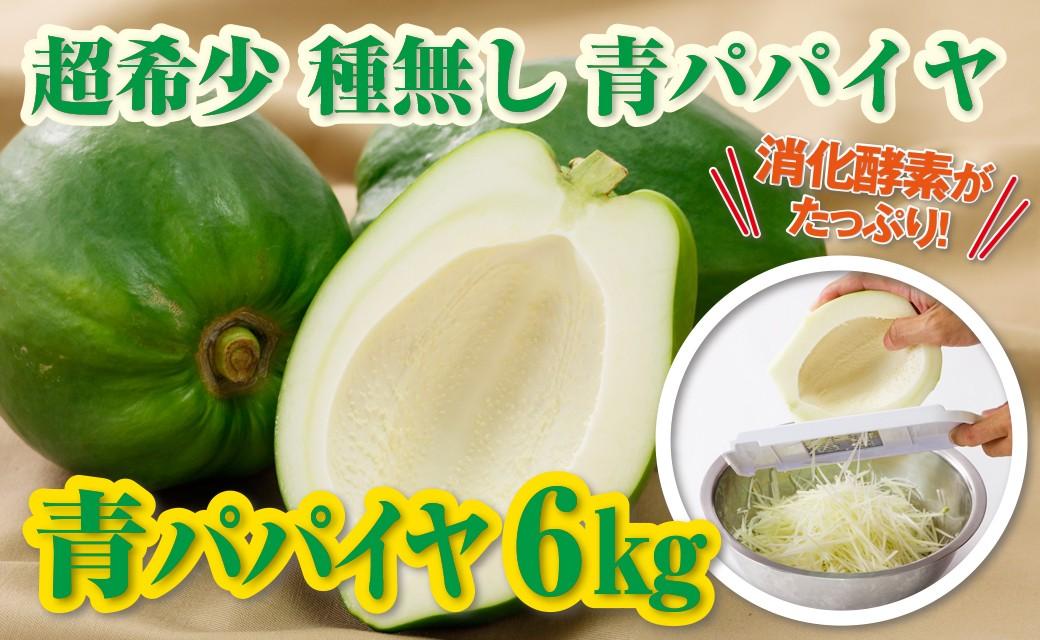 【野菜】としての注目食材「青パパイヤ」