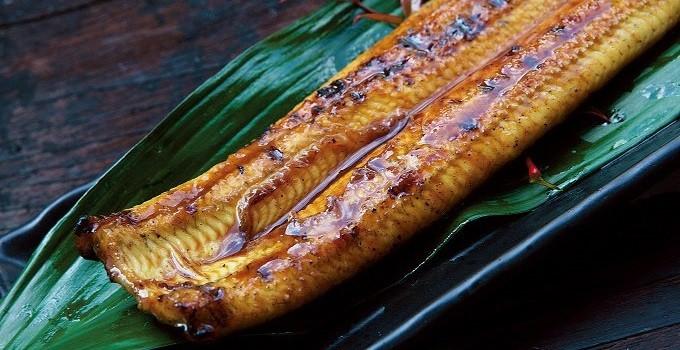 栗焼酎「ダバダ火振り」と共に、四万十地焼き蒲焼鰻をお楽しみください