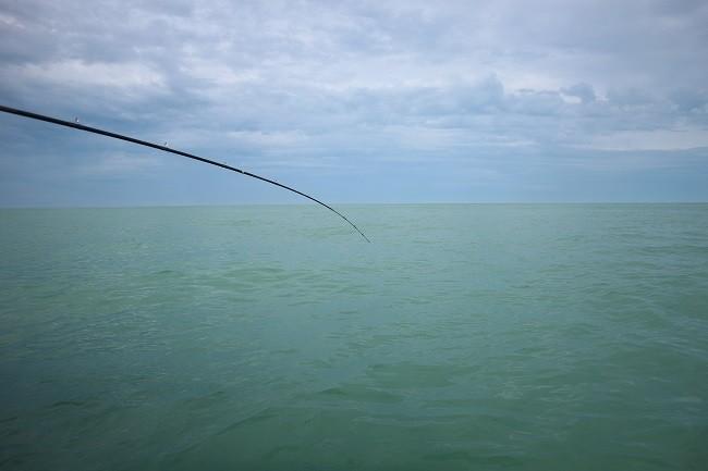 海は青いなぁ・・・