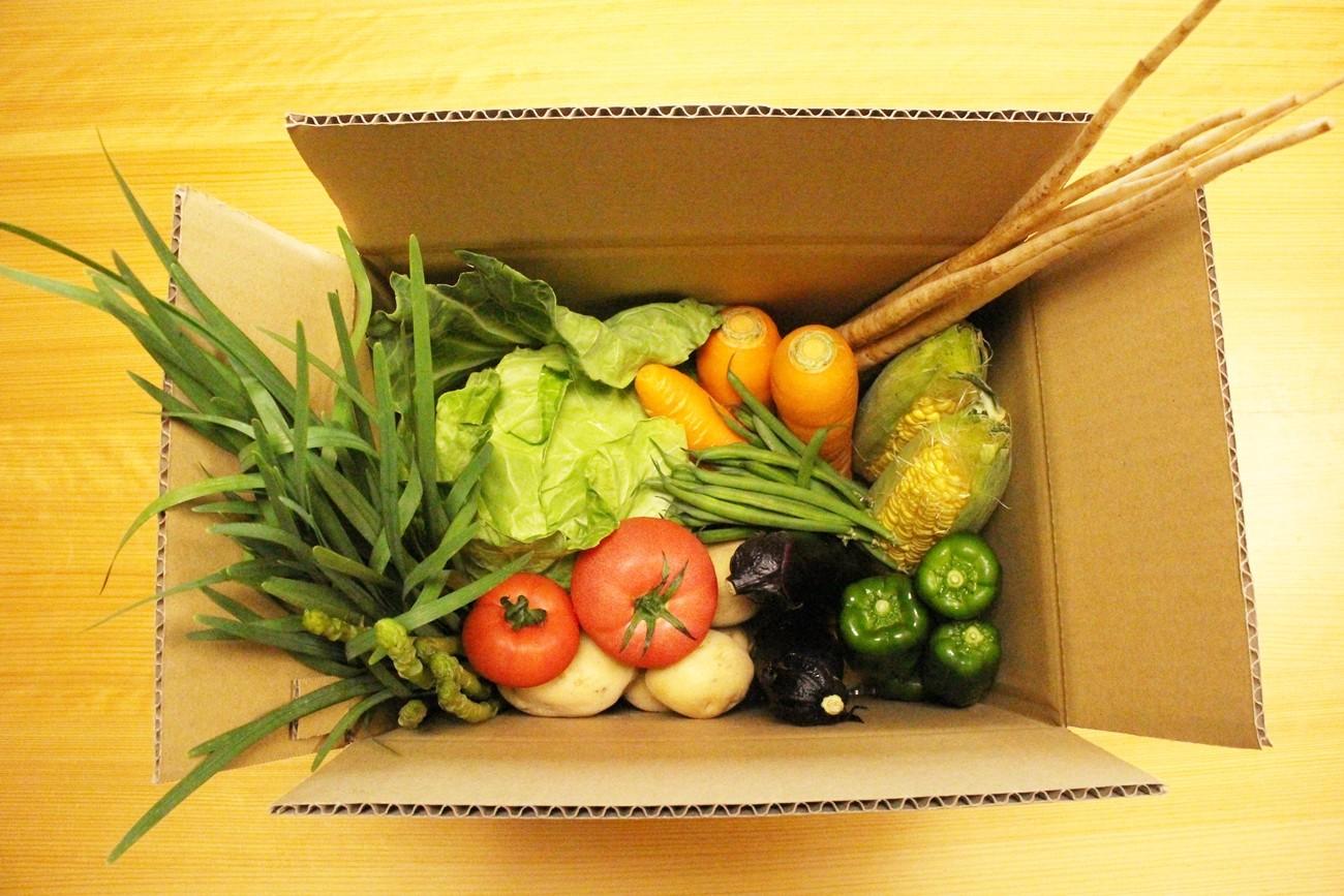 段ボールいっぱいに新鮮な越知町の野菜をお届けします!