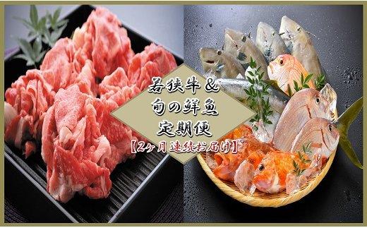 【2ヶ月連続お届け】 若狭牛&旬の鮮魚 定期便